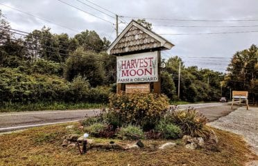 Harvest Moon Farm & Orchard