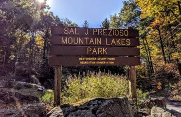 Mt Lakes Park